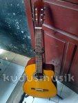gitar nilon